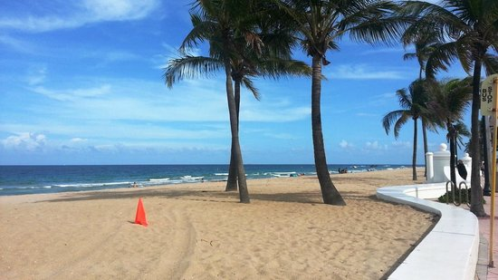 Fort Lauderdale Beach : Typical Florida beauty