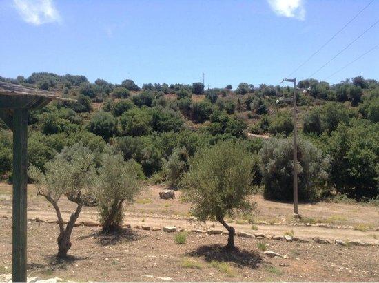 Relais Parco Cavalonga: View