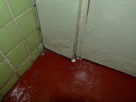 Posada de Babel: A corner and the door in the bathroom