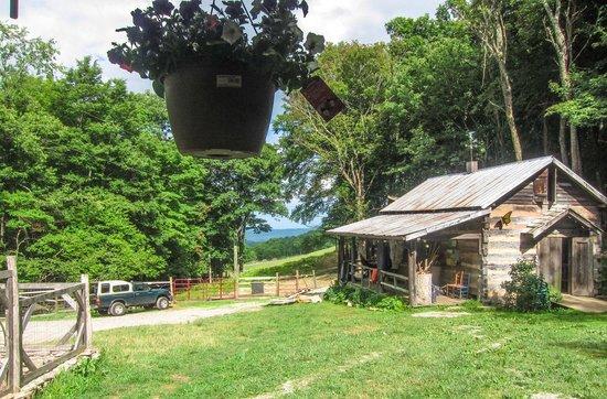 Woods Hole Hostel & Mountain Retreat: Bunk House