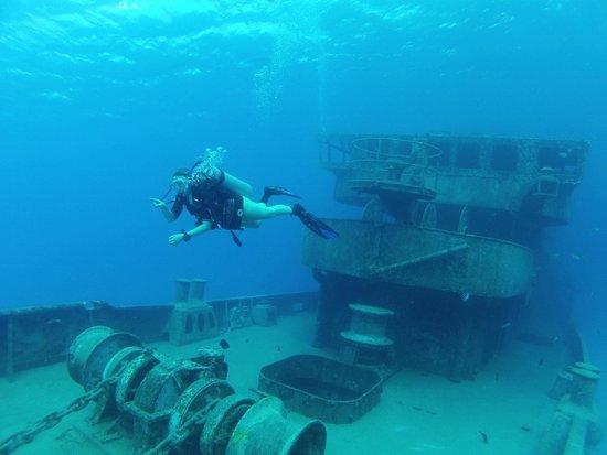 Living The Dream Divers: Kittiwake