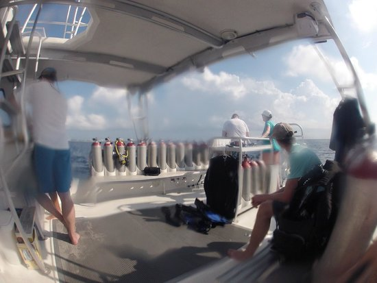 Living The Dream Divers: Dive boat