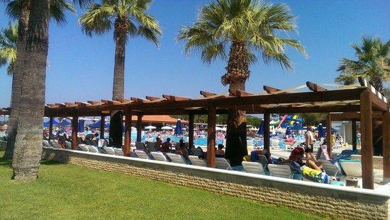 Kustur Club Holiday Village : Pool