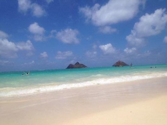 Lanikai Beach : この浜辺の砂は本当に白かった。