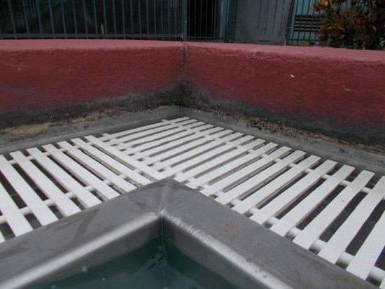 Allure Resort International Drive Orlando: Filthy edge of pool