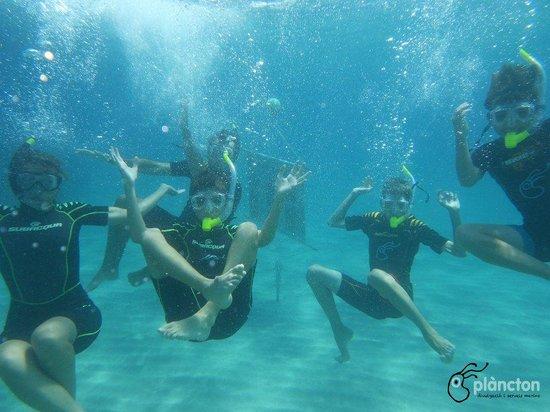 Plancton Diving