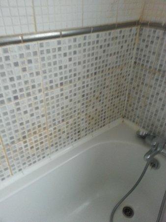 South Park Cottage Apartment: dirty bathroom