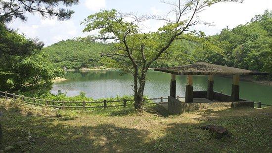 Nakayama Pond