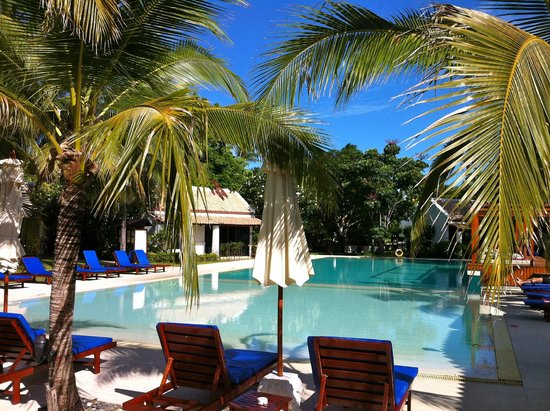 Samui Palm Beach Resort & Hotel : relax in piscina