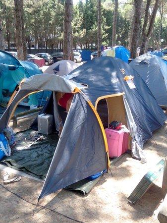 Camping Laguna Village: Sistemazione in pineta