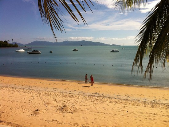 Samui Palm Beach Resort & Hotel : il mare scurissimo fronte resort