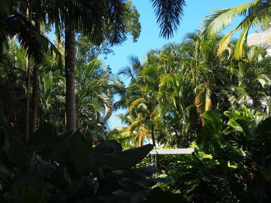 Peppers Beach Club & Spa: Beautiful Gardens