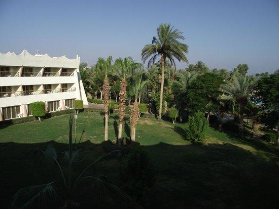 Nuweiba Coral Resort: вид с балкона