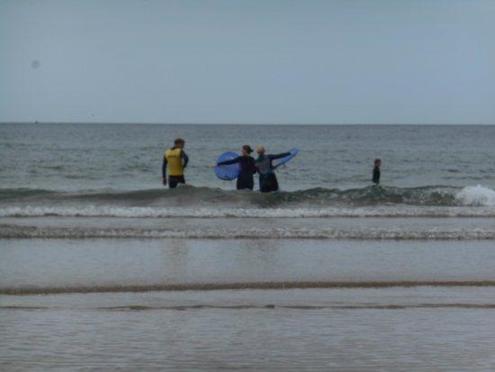 Alive Surf School: 2 beach whales
