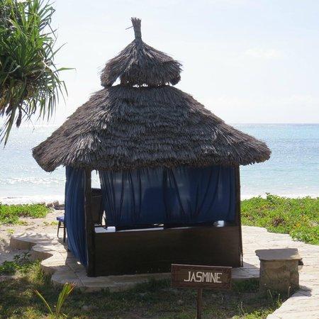 The Palms: Beach banda