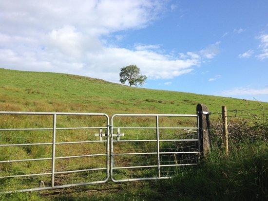 Ard na Breatha : on a nearby walk