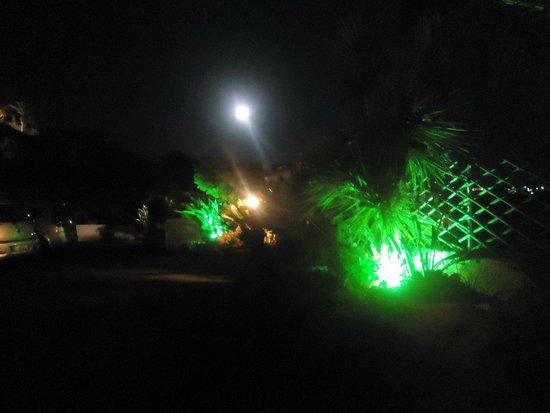 Casa del Sole: Giardino in notturna