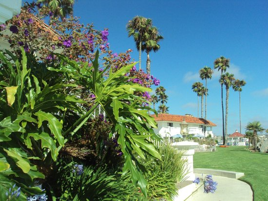 Oceanside Marina Suites: Grounds