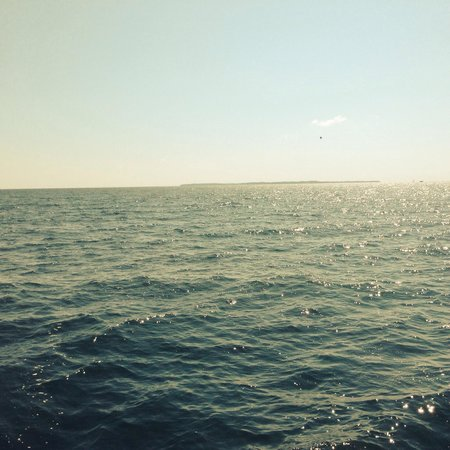 South Bass Island: On the ferry to the island