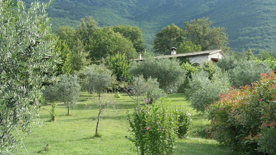 Il Bruco B&B: view back upto the house