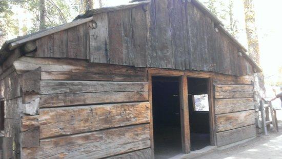 Grant Grove: Gamlin Cabin