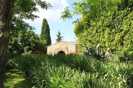 Fattoria Tregole: Such a beautiful place in the hills of Chianti.