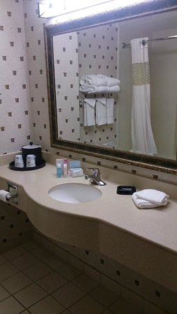 Hampton Inn Boston Bedford Burlington : Bathroom