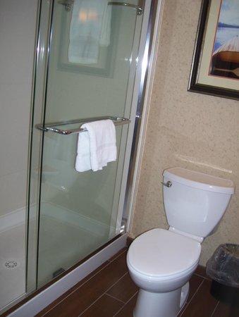 Hilton Garden Inn Watertown/Thousand Islands: bathroom