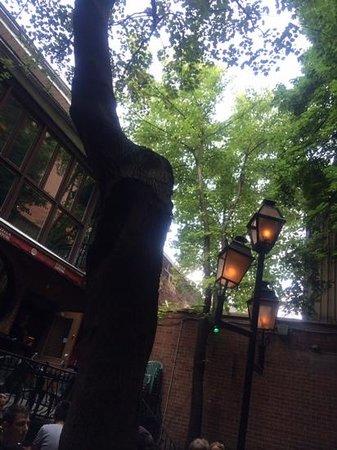 Pub Sainte-Elisabeth: la terrasse