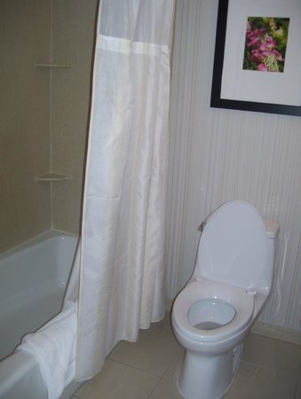 Hilton Garden Inn Queens / JFK Airport: bathroom