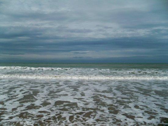 Plage de Deauville : Beach