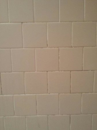 Rodeway Inn & Suites: Dirty shower grout
