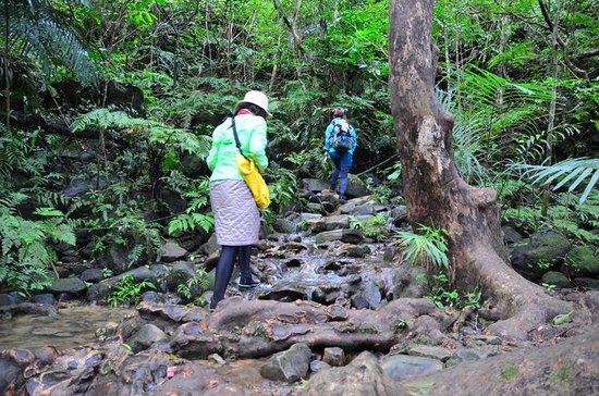 Pinaisara Falls : 滑りやすいので注意