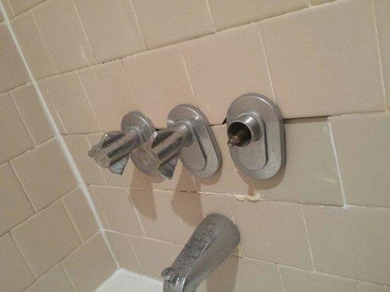 Rodeway Inn & Suites : Shower fixtures