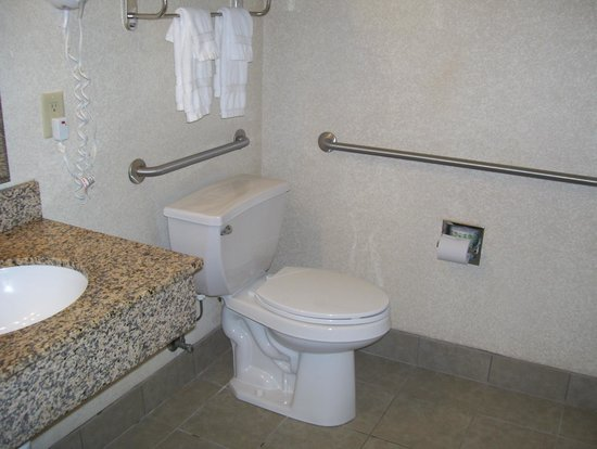 BEST WESTERN The Inn at the Fairgrounds : accessible bathroom
