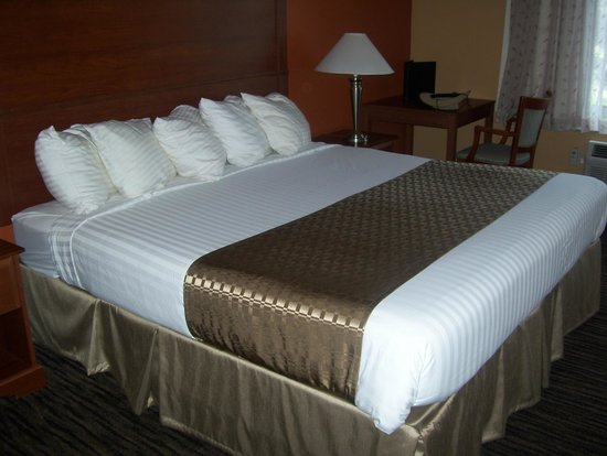 BEST WESTERN The Inn at the Fairgrounds : bed