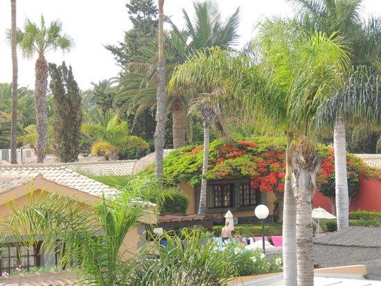 Dunas Maspalomas Resort: végétation hôtel