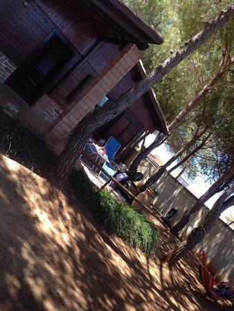 Residence La Pineta : La nostra villetta