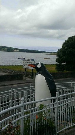 Dingle Oceanworld: Look at the Views