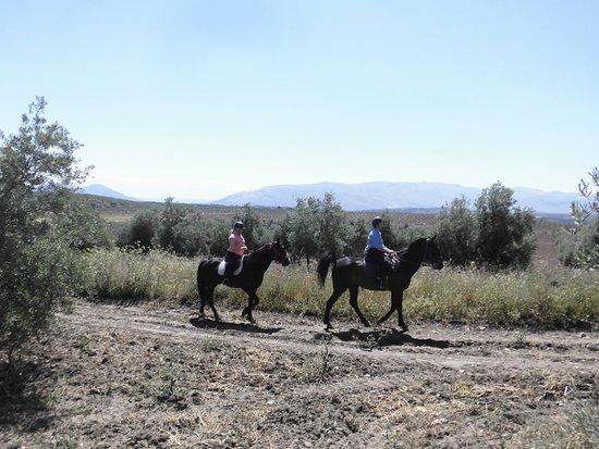 Cortijo Las Minas: Half Day Ride