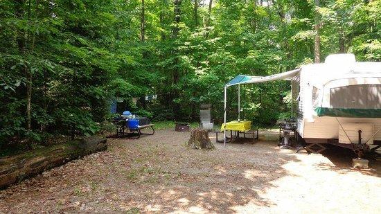 Arrowhead Provincial Park: Campsite 125