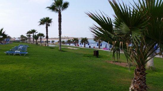 Kefalos Beach Tourist Village: Lawn between pool and beach