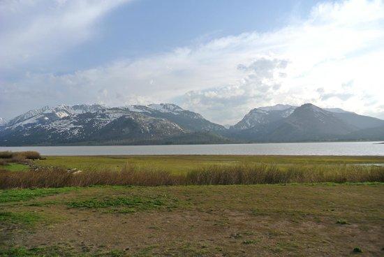 John D Rockefeller Jr Memorial Parkway : Jackson Lake