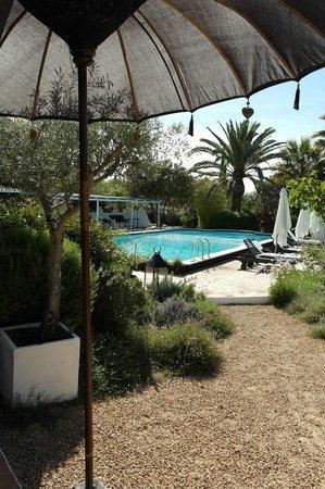 Quinta da Lua : Pool area