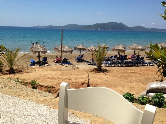 Bar Bord De Plage  Bar With A Terrace And Sea View At The