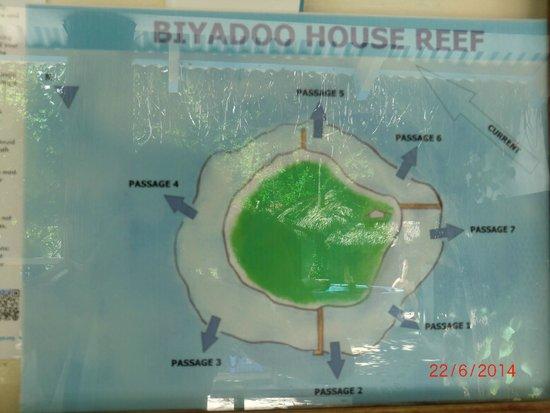 Biyadhoo Island Resort: LE PLAN DE L'ILE ET DES PASSES