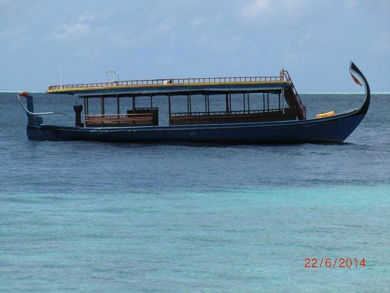 Biyadhoo Island Resort: LE DHONI (bateau de plongée)