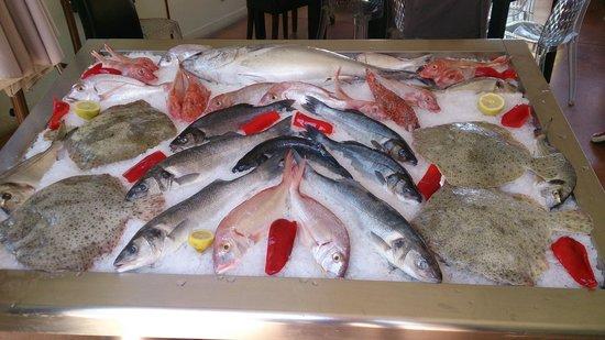 LE NAUTICA DES GOUDES : Du bon poisson frais!!!!