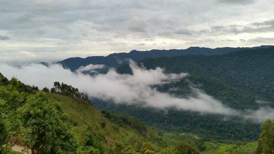 Nkuringo Bwindi Gorilla Lodge: Beautiful views