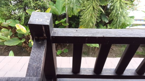 Assaradevi Villa and Spa Chiang Mai: balcony that is filled with pooh of lizard n pigeons